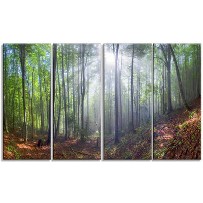 Designart Morning Sun Rays in Carpathian LandscapePhotography Canvas Print - 4 Panels