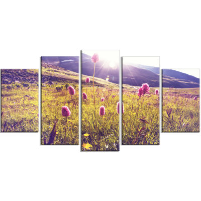 Mountain Pasture With Pink Flowers Large Flower Wrapped Canvas Art Print - 5 Panels
