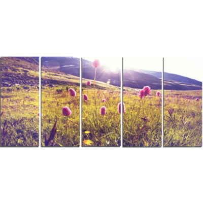 Mountain Pasture With Pink Flowers Large Flower Canvas Art Print - 5 Panels