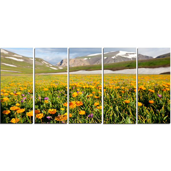 Mountain Plain With Wild Yellow Flowers Floral Canvas Art Print - 5 Panels