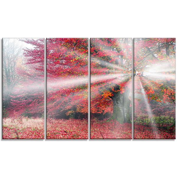 Designart Mystical Light in Red Fall Forest Landscape Photography Canvas Print - 4 Panels