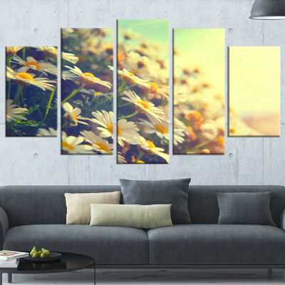 Nature With Blooming Chamomiles Large Floral Wrapped Art Wrapped Canvas - 5 Panels