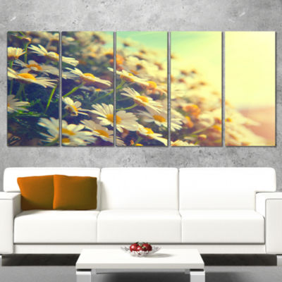 Designart Nature With Blooming Chamomiles Large Floral WallArt Canvas - 5 Panels