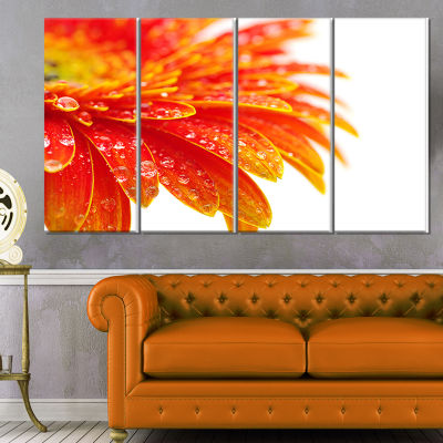 Designart Orange Gerbera With Raindrops Floral Canvas Art Print - 4 Panels