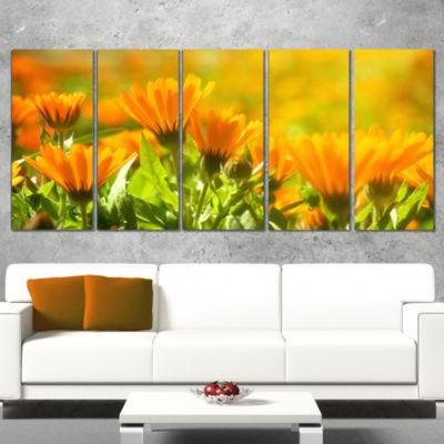 Designart Orange Marigold Flowers in Sunlight Floral WrappedCanvas Art Print - 5 Panels