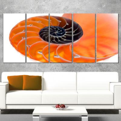 Designart Orange Nautilus Shell Abstract Canvas Art Print -5 Panels