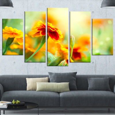 Orange Tagetes Marigold Flowers Floral Wrapped Canvas Art Print - 5 Panels