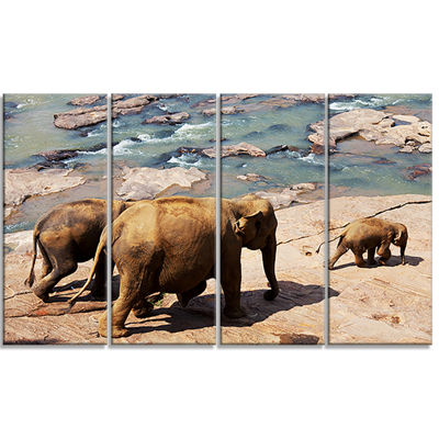Designart Parade of Elephants in Sri Lanka AfricanLandscapeCanvas Art Print - 4 Panels