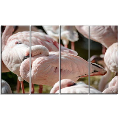 Designart Pat of Flamingos Close Up Abstract Canvas Art Print - 4 Panels