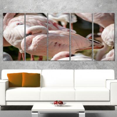 Designart Pat of Flamingos Close Up Abstract Canvas Art Print - 5 Panels