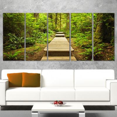Designart Path in Temperate Rainforest Landscape PhotographyCanvas Print - 5 Panels