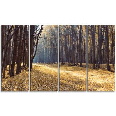 Designart Path in The Fall Forest Panorama ForestCanvas ArtPrint - 4 Panels