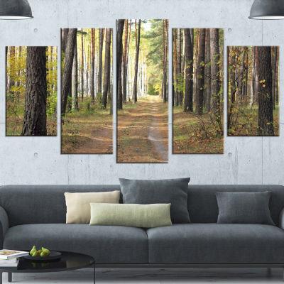 Designart Pathway in Autumn Pine Forest Modern Forest CanvasArt - 5 Panels