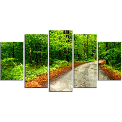 Pathway in Deep Moss Forest Landscape Wrapped Canvas Art Print - 5 Panels