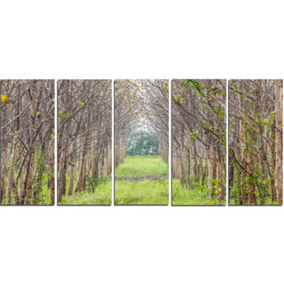 Designart Pathway Through Fall Green Trees Landscape Photography Canvas Print - 4 Panels