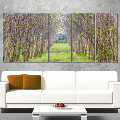 Designart Pathway Through Fall Green Trees Landscape Photography Canvas Print - 5 Panels