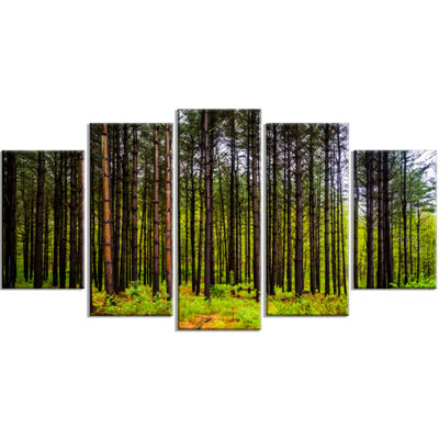 Designart Pine Trees in Michaux Forest Modern Forest WrappedCanvas Art - 5 Panels