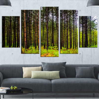 Designart Pine Trees in Michaux Forest Modern Forest CanvasArt - 5 Panels