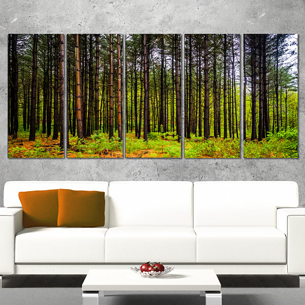 Pine Trees in Michaux Forest Modern Forest CanvasArt - 5 Panels