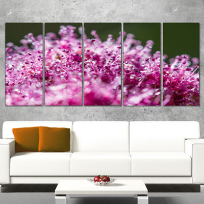Designart Pink Little Flowers Close Up View LargeFloral Wrapped Art Wrapped Canvas - 5 Panels