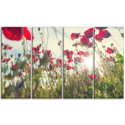 Poppy Flowers on Summer Meadow Floral Canvas Art Print - 4 Panels