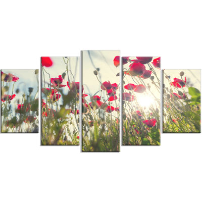 Designart Poppy Flowers on Summer Meadow Floral Wrapped Canvas Art Print - 5 Panels