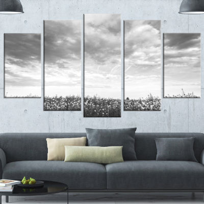 Designart Rapeseed Garden in Black and White LargeLandscapeWrapped Canvas Art - 5 Panels
