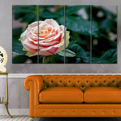 Red and Orange Rose Flower Close Up Floral CanvasArt Print - 4 Panels