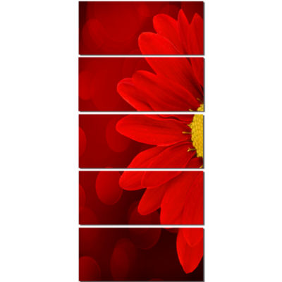 Red Flower With Lit Up Background Large Floral Canvas Artwork - 5 Panels