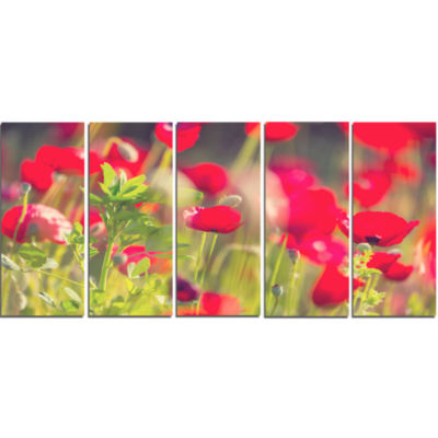 Red Poppies on Green Background Large Flower Canvas Art Print - 5 Panels