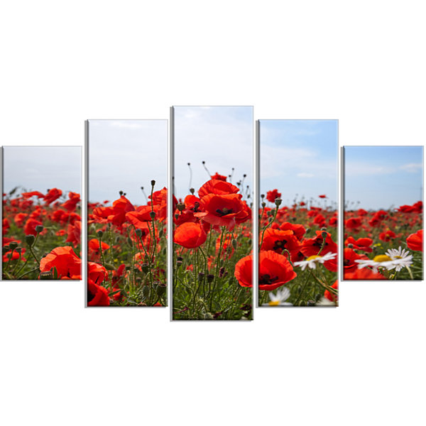 Designart Red Poppies Under Bright Blue Sky FlowerArtwork on Wrapped Canvas - 5 Panels