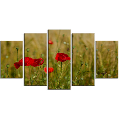 Designart Red Poppy Flower Field Background LargeFlower Wrapped Canvas Wrapped Art - 5 Panels