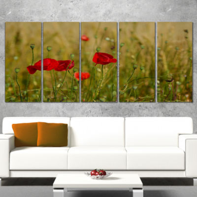 Designart Red Poppy Flower Field Background LargeFlower Canvas Wall Art - 5 Panels