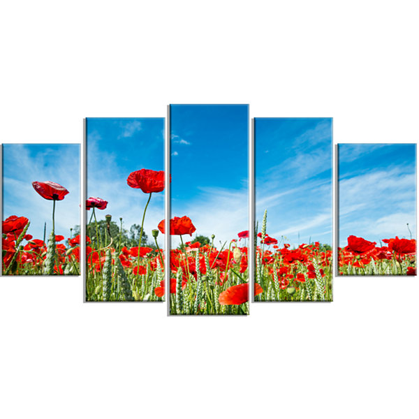 Designart Red Poppy Garden Under Clear Sky FloralWrapped Canvas Art Print - 5 Panels