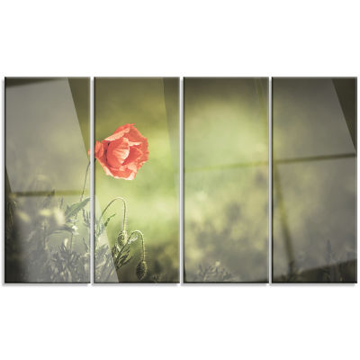 Red Wild Poppy Flower on Green Floral Canvas Art Print - 4 Panels