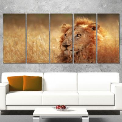 Designart Relaxing Lion in Grassland African Canvas Art Print - 5 Panels