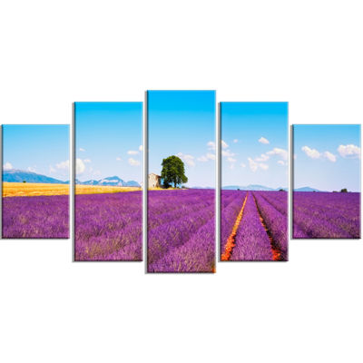 Designart Remote House and Tree in Lavender FieldOversizedLandscape Wrapped Art Print - 5 Panels