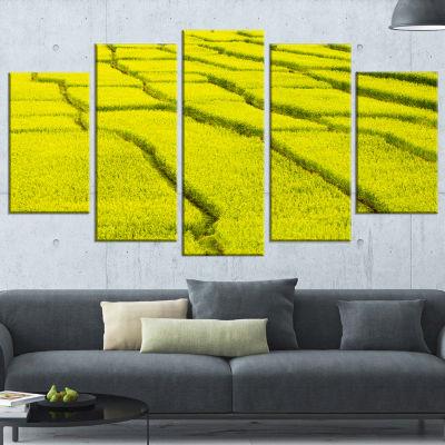 Designart Rice Field View Landscape Photography Canvas Art Print - 4 Panels
