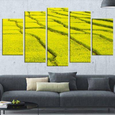 Designart Rice Field View Landscape Photography Canvas Art Print - 5 Panels