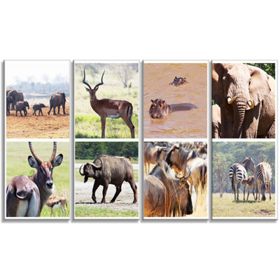 Designart Rich African Wildlife Collage Animal ArtPainting- 4 Panels