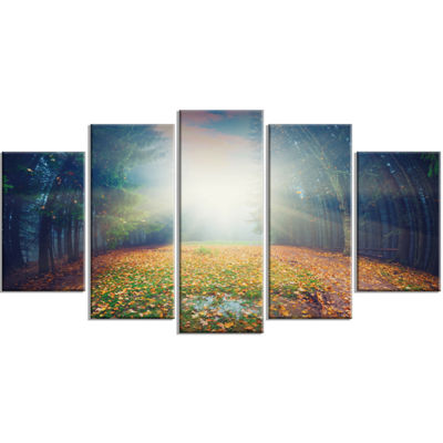 Designart Rising Sun Over Arched Forest LandscapePhoto Canvas Art Print - 5 Panels