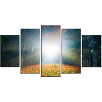 Designart Rising Sun Over Colorful Forest Landscape Photo Wrapped Canvas Art Print - 5 Panels