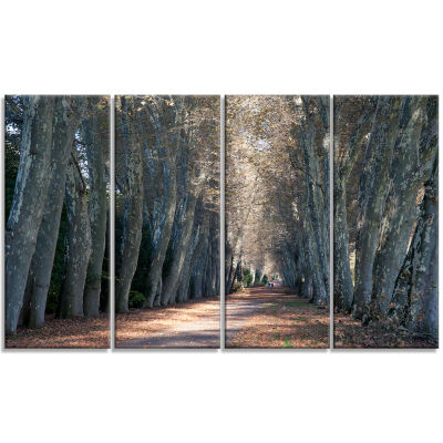 Road in Thick Autumn Woods Modern Forest Canvas Art - 4 Panels