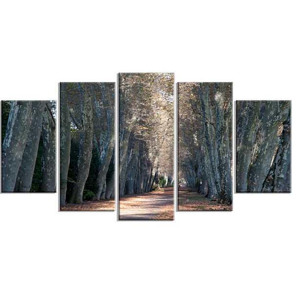 Road in Thick Autumn Woods Modern Forest Wrapped Canvas Art - 5 Panels