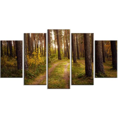 Designart Road Through Thick Fall Forest Modern Forest Wrapped Canvas Art - 5 Panels