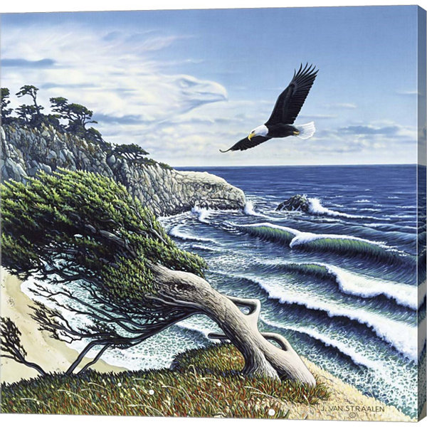 Metaverse Art Eagle Cove Gallery Wrap Canvas Wall Art