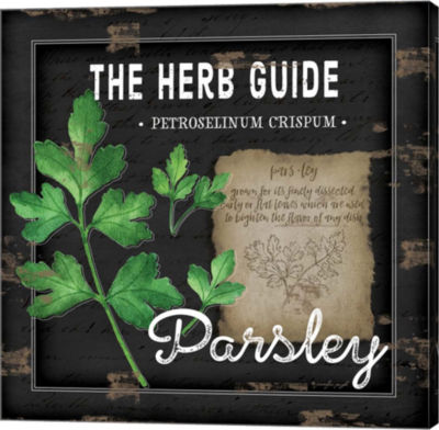 Metaverse Art Herb Guide Parsley Gallery Wrapped Canvas Wall Art