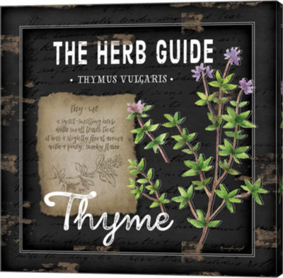 Metaverse Art Herb Guide Thyme Gallery Wrapped Canvas Wall Art