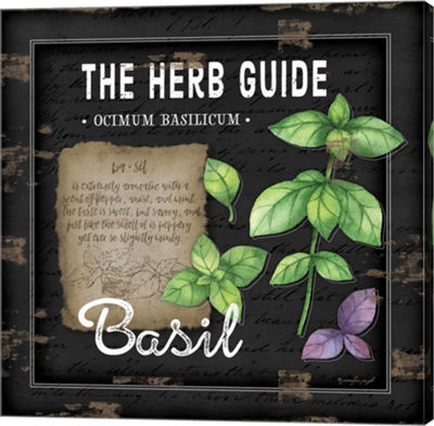 Metaverse Art Herb Guide Basil Gallery Wrapped Canvas Wall Art