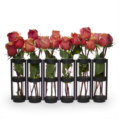 Danya B.  Six Wide Tube Hinged Vases